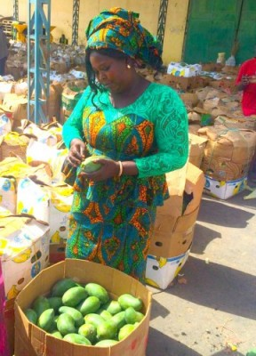 Woman selling magoes at market in Senegal