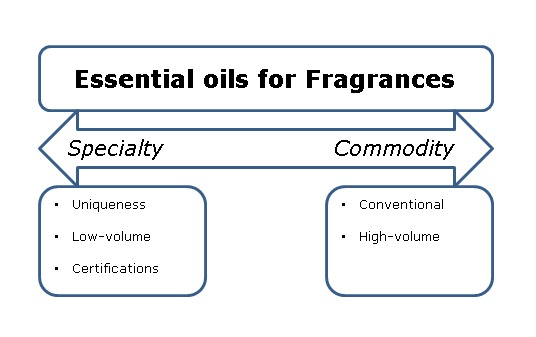 analysis of perfume industry Perfumes market: western europe to account for maximum revenue share:  global industry analysis and opportunity assessment,.