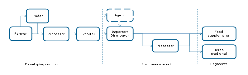 Exporting curcuma longa (turmeric) to Europe | CBI - Centre