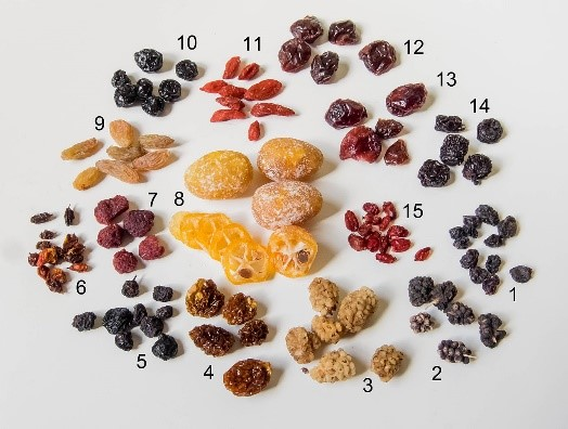 picture_4_dried_fruit_less_commonly_produced.jpg