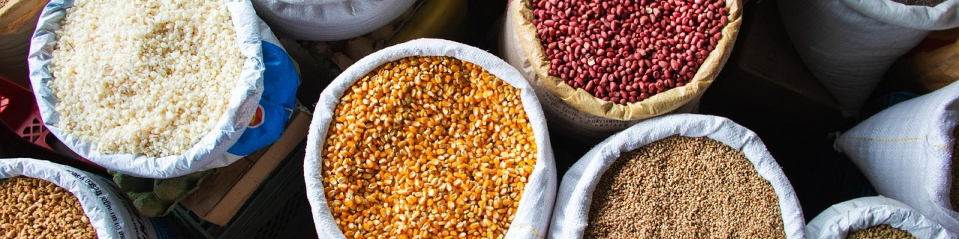 Grains and pulses in bags