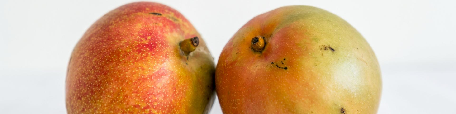 The European Market Potential For Mangoes Cbi Centre For The